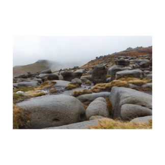 Misty Woolpacks