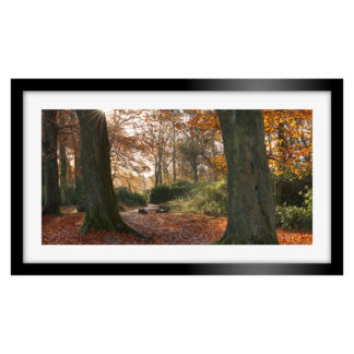 183_Autumnal_Longshaw_Estate_Panoramic
