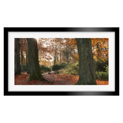 183_Autumnal_Longshaw_Estate_Panoramic